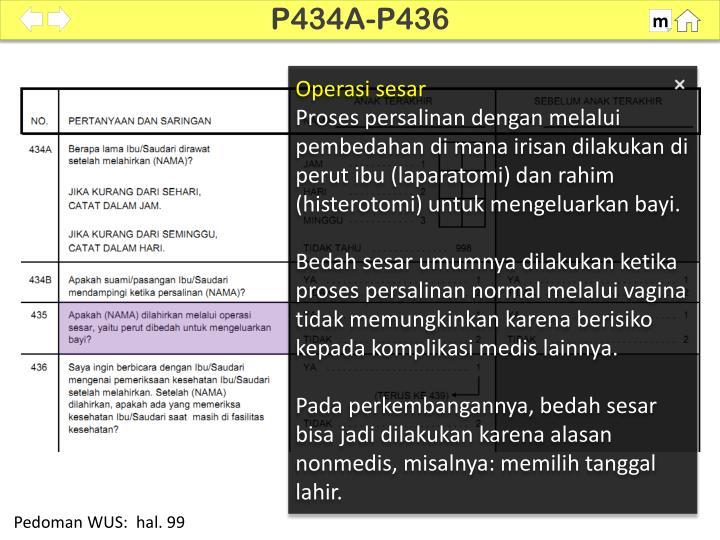 P434A-P436