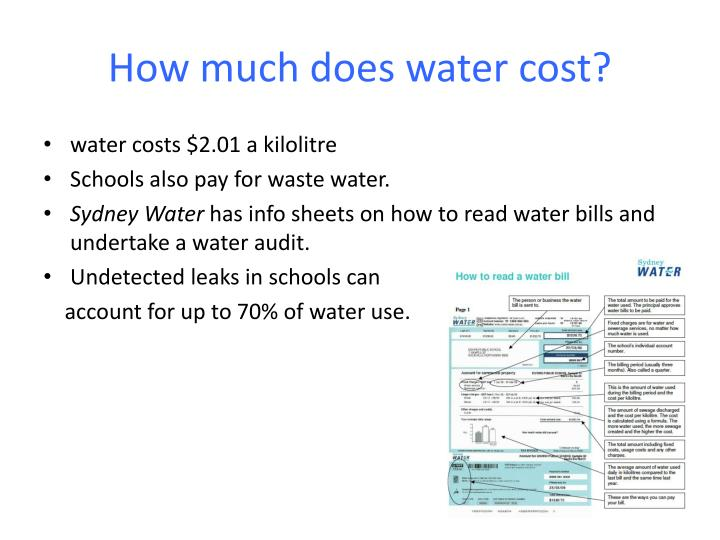 How much does water cost?