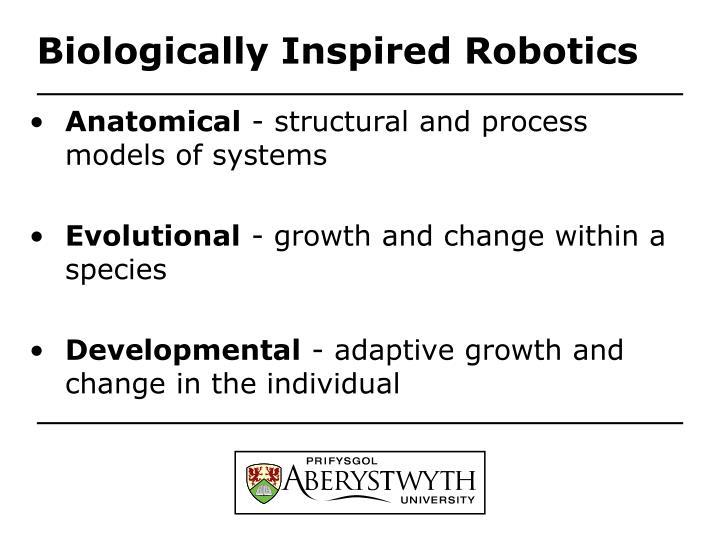 Biologically Inspired Robotics