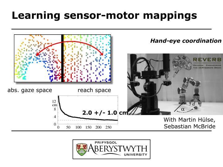 Learning sensor-motor mappings