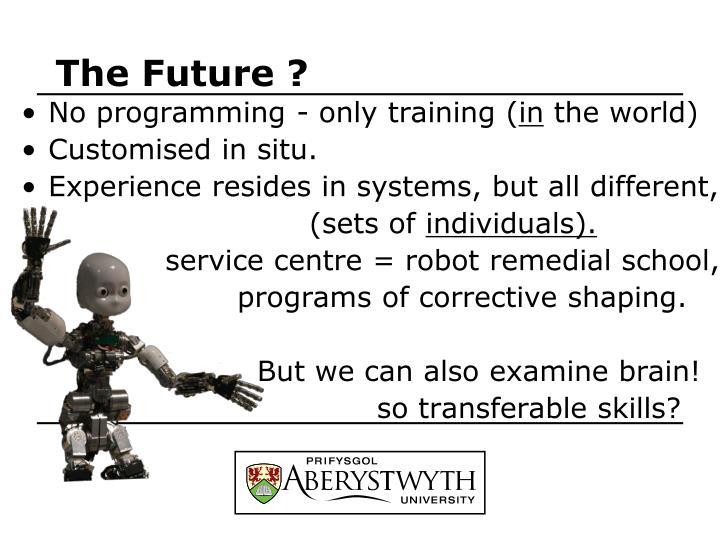 The Future ?