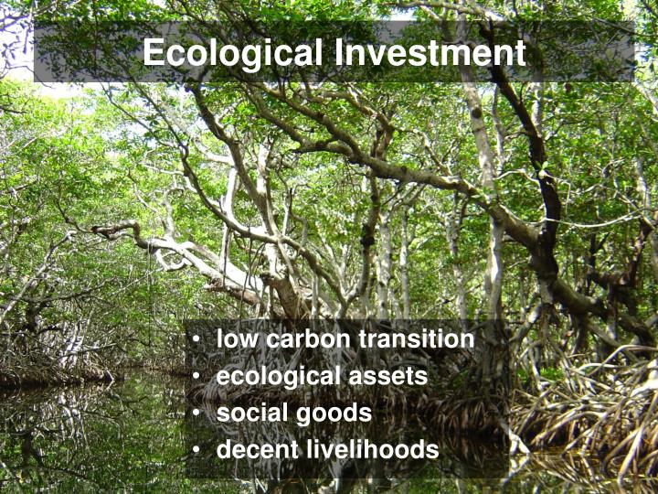 Ecological Investment