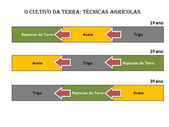 O cultivo da terra: técnicas agrícolas
