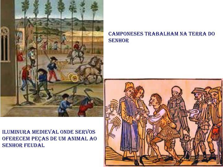 Camponeses trabalham na terra do senhor