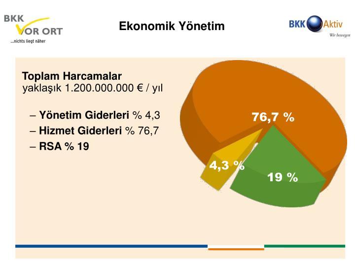 Ekonomik Yönetim