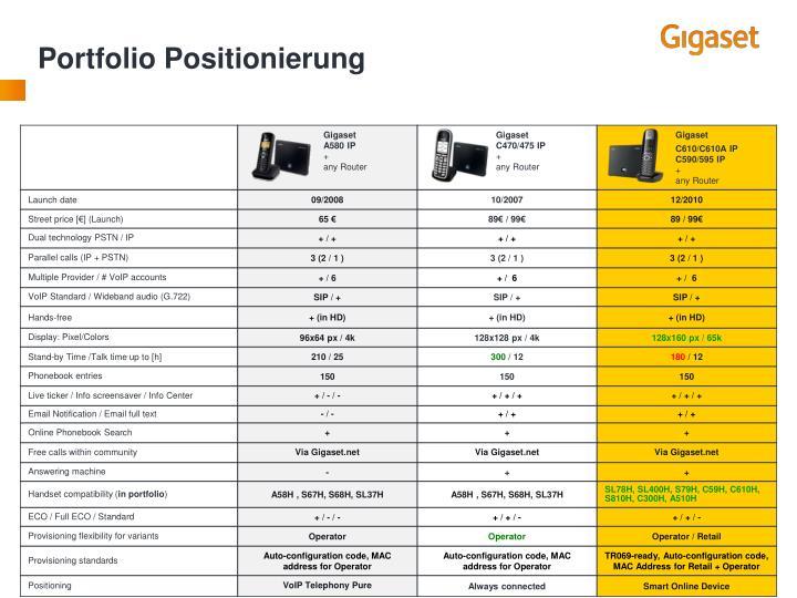 Portfolio Positionierung
