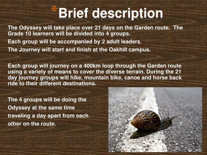 Brief description