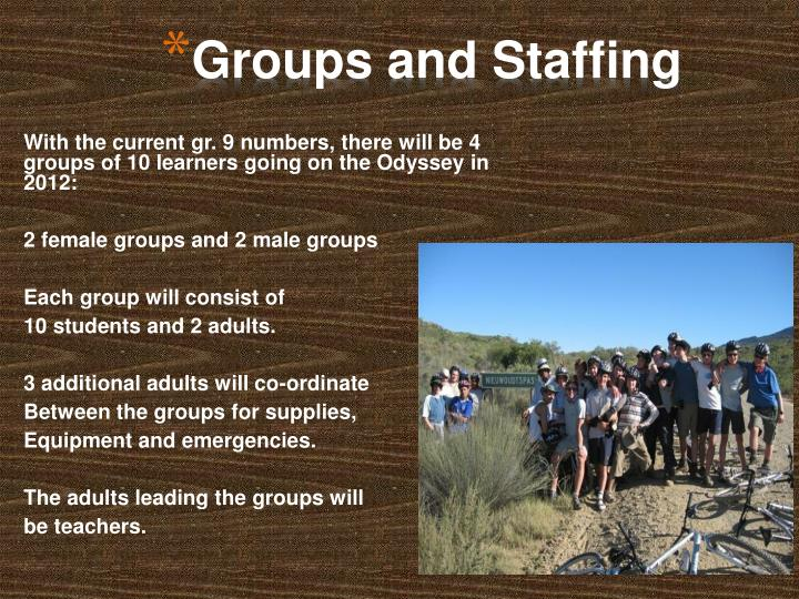 Groups and Staffing