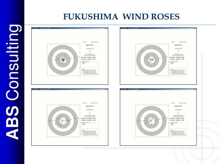 FUKUSHIMA  WIND ROSES