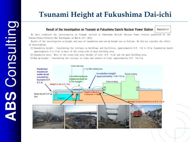 Tsunami Height at Fukushima Dai-ichi