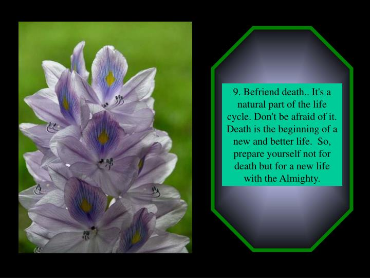 9. Befriend death.. It's a natural part of the life cycle. Don't be afraid of it. Death is the beginning of a new and better life.  So, prepare yourself not for death but for a new life with the Almighty.