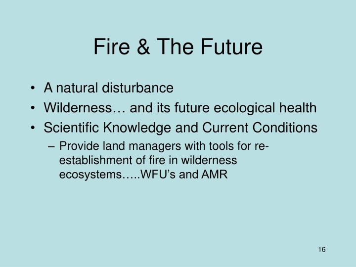 Fire & The Future