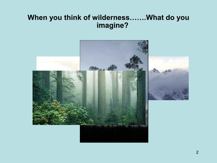 When you think of wilderness…….What do you imagine?