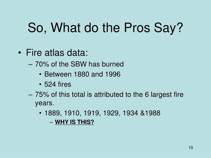 So, What do the Pros Say?