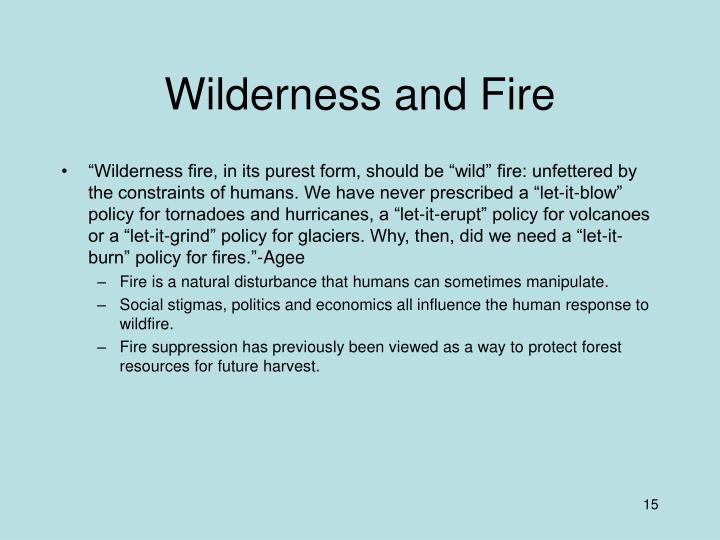 Wilderness and Fire