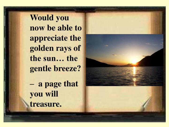 Would you now be able to appreciate the golden rays of the sun… the gentle breeze?