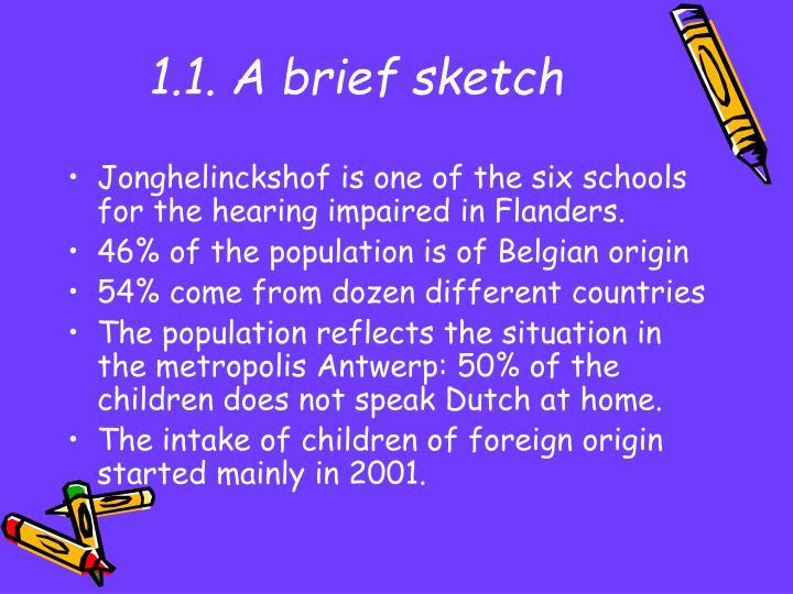 1.1. A brief sketch