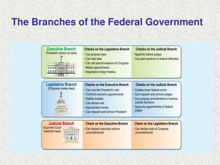 The Branches of the Federal Government