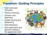 transition guiding principles