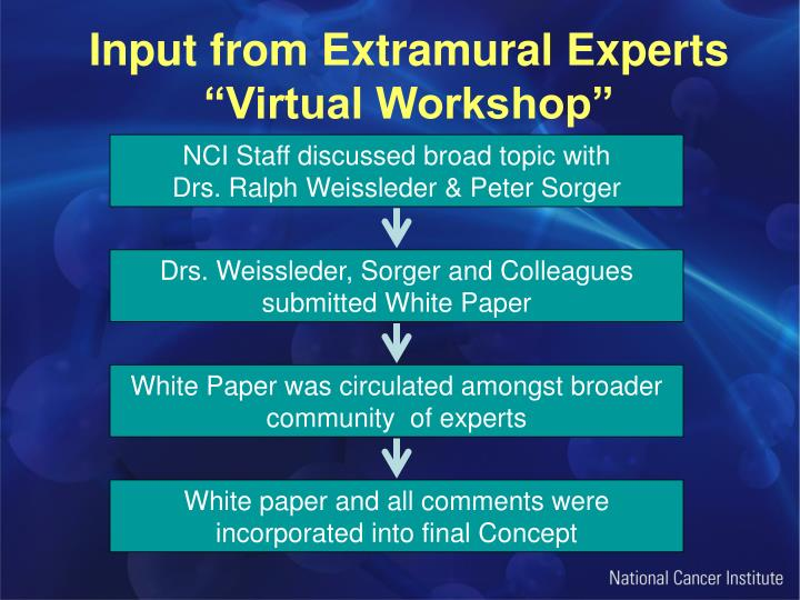 Input from Extramural Experts