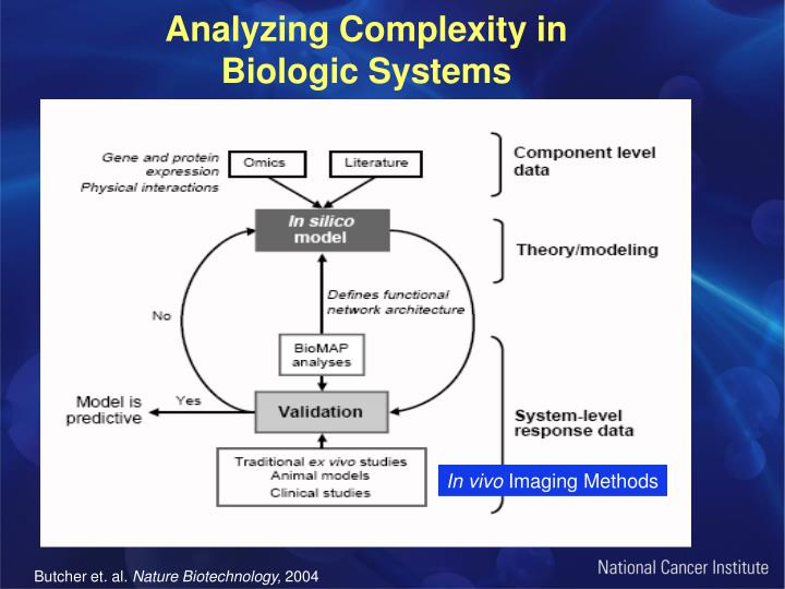 Analyzing Complexity in