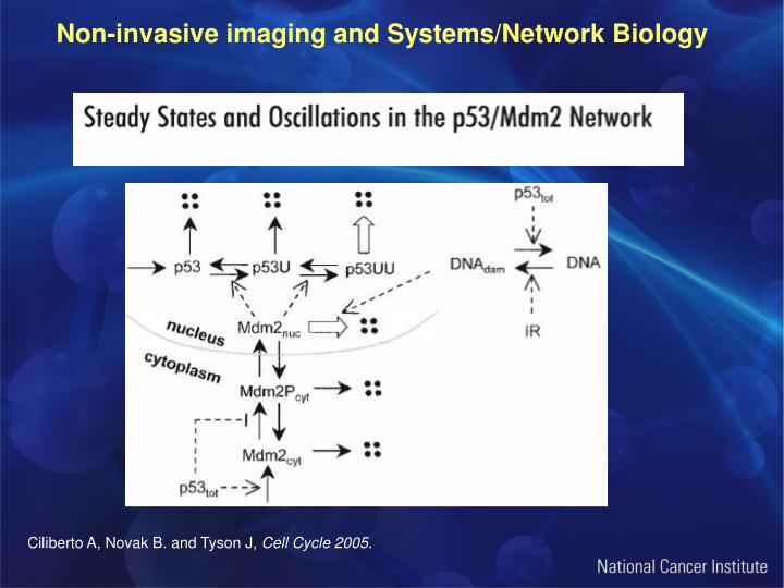 Non-invasive imaging and Systems/Network Biology