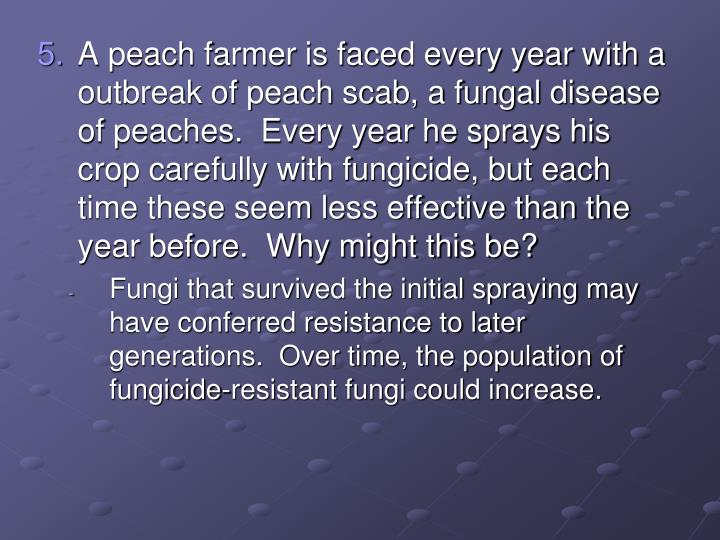 A peach farmer is faced every year with a outbreak of peach scab, a fungal disease of peaches.  Every year he sprays his crop carefully with fungicide, but each time these seem less effective than the year before.  Why might this be?