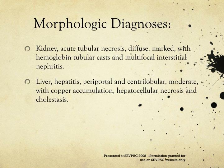 Morphologic Diagnoses: