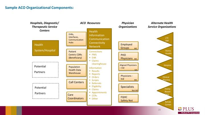 Sample ACO Organizational Components: