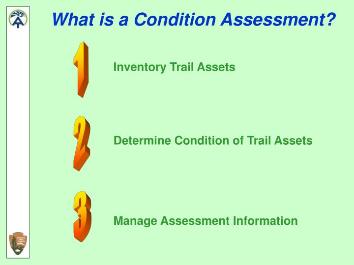 What is a Condition Assessment?