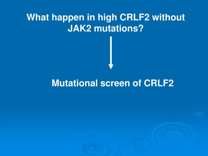 What happen in high CRLF2 without JAK2 mutations?
