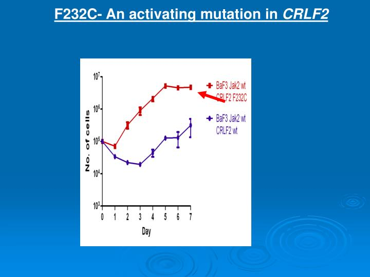 F232C- An activating mutation in