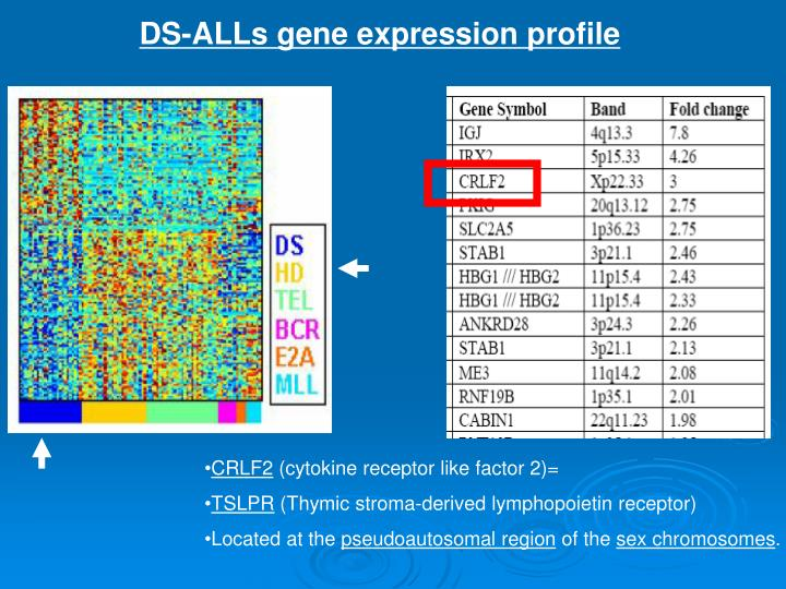 DS-ALLs gene expression profile
