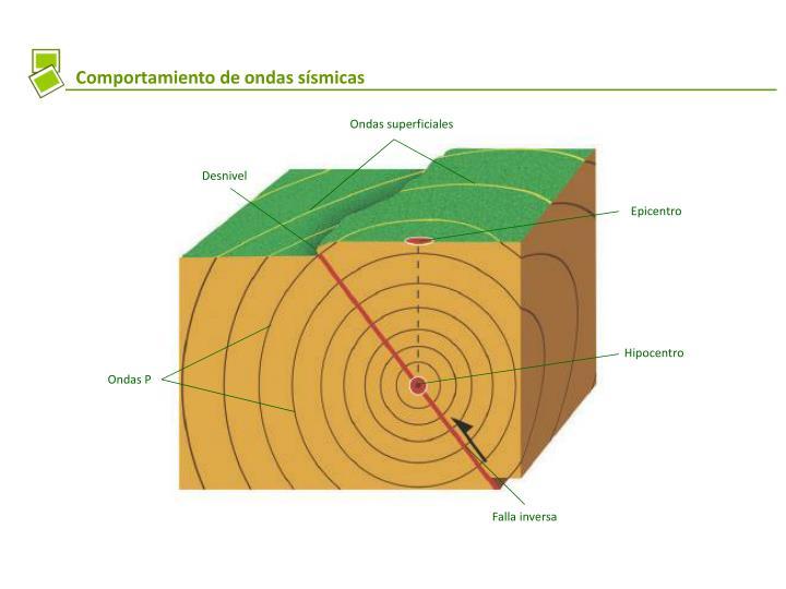 Comportamiento de ondas sísmicas