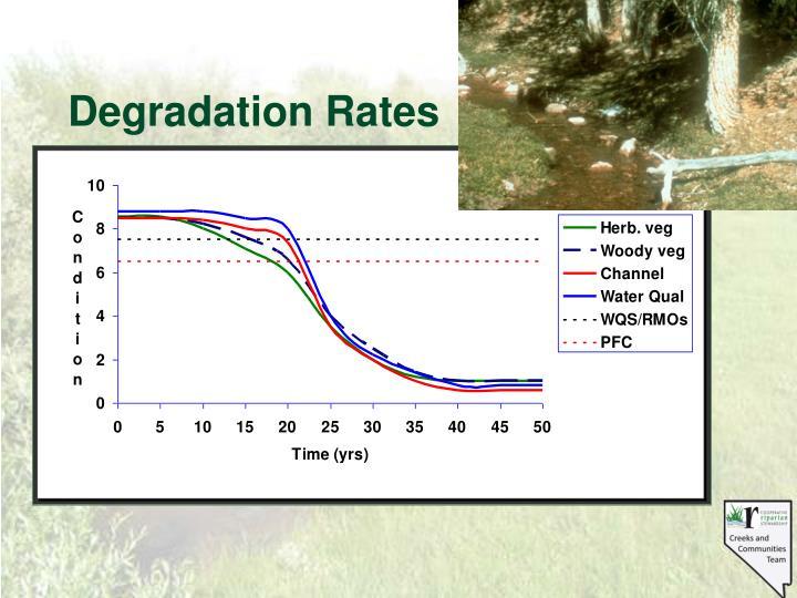 Degradation Rates