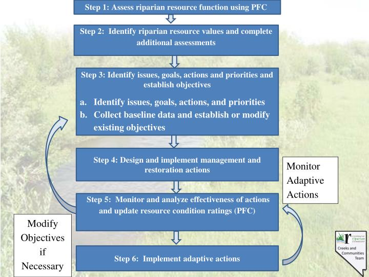 Step 1: Assess riparian resource function using