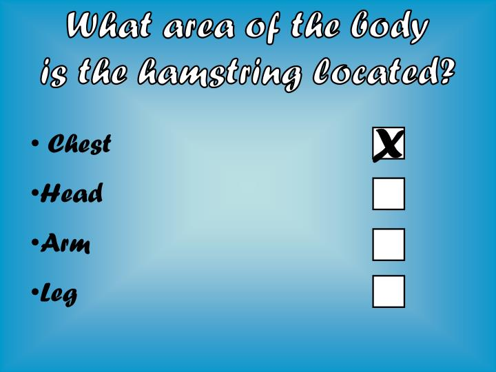 What area of the body