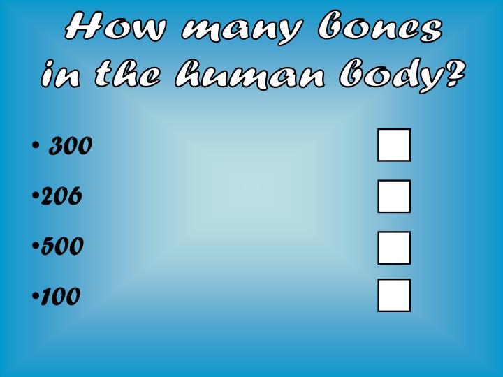 How many bones