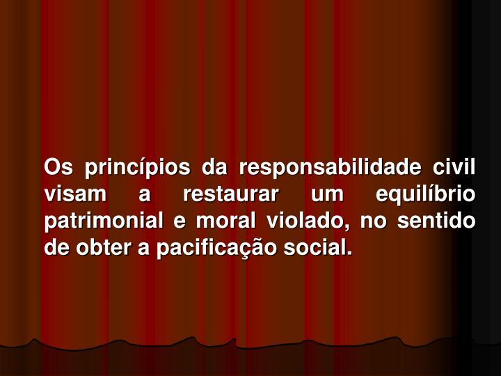 Os princípios da responsabilidade civil visam a restaurar um equilíbrio patrimonial e moral violado, no sentido de obter a pacificação social.