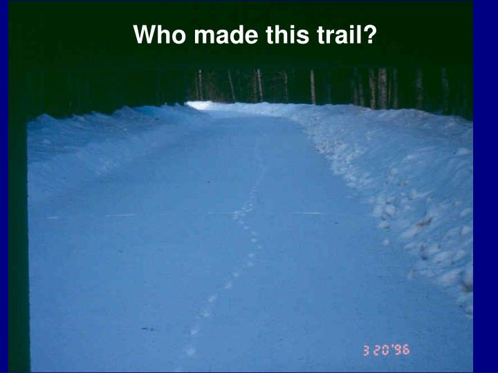 Who made this trail?