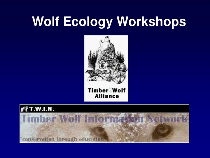 Wolf Ecology Workshops