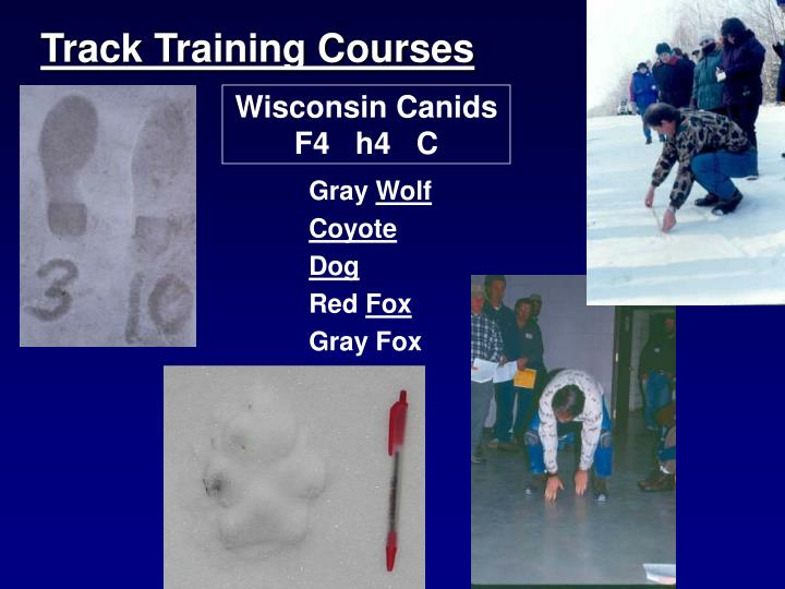 Track Training Courses