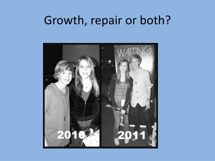 Growth, repair or both?