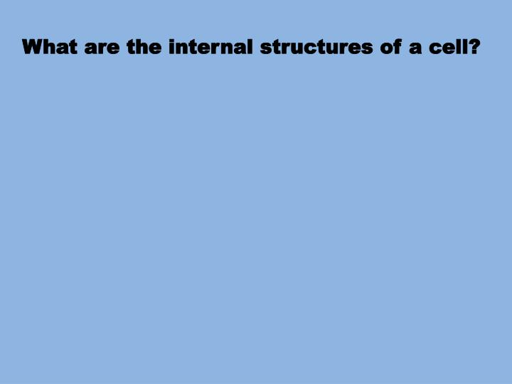 What are the internal structures of a cell?