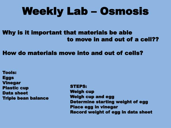 Weekly Lab – Osmosis