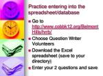 practice entering into the spreadsheet database