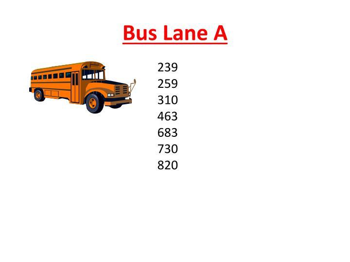 Bus Lane A