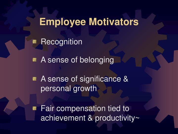 Employee Motivators