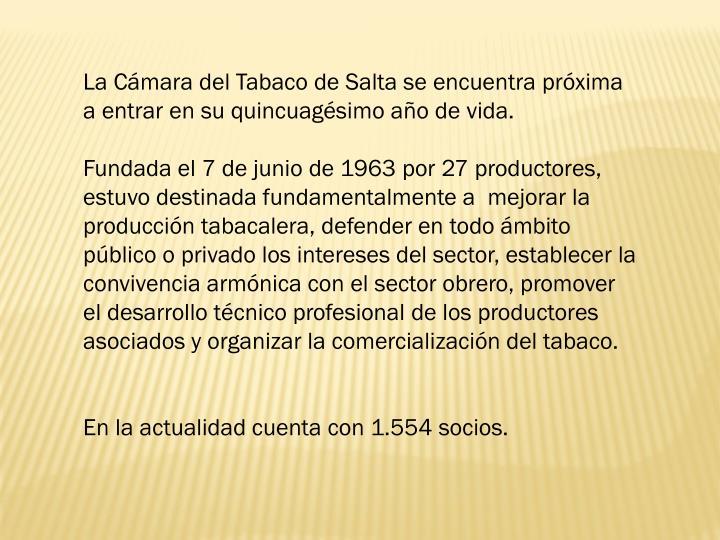La Cmara del Tabaco de Salta se encuentra prxima a entrar en su quincuagsimo ao de vida.
