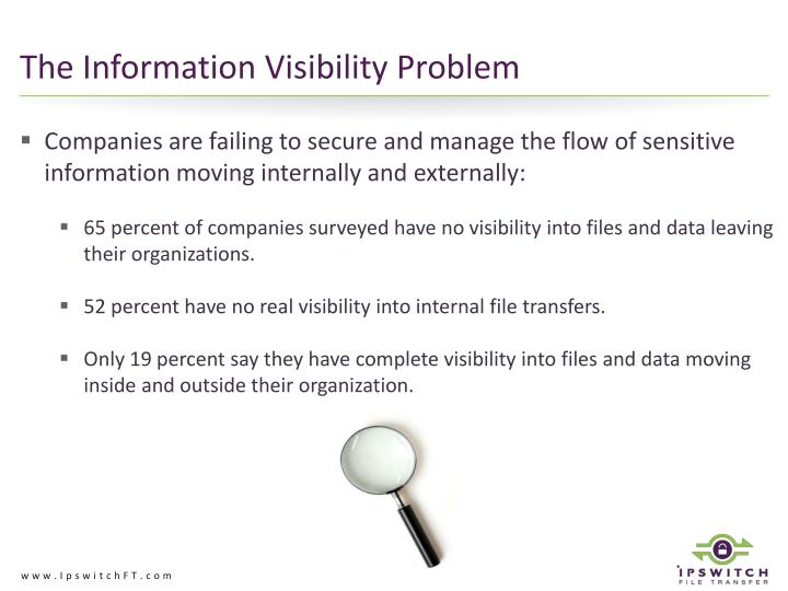 The Information Visibility Problem
